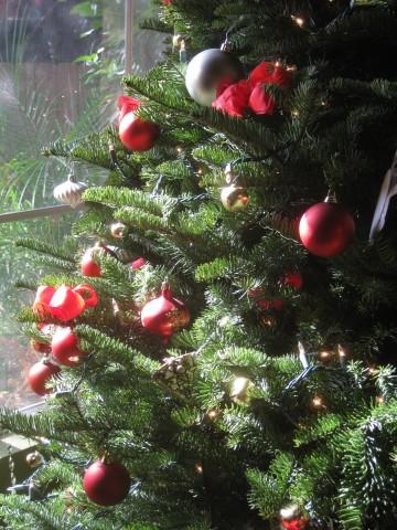 Steussy Christmas Tree 2009